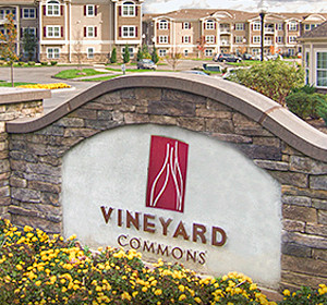 <span>Vineyard Commons<em>A story about building a community</em></span><i>→</i>